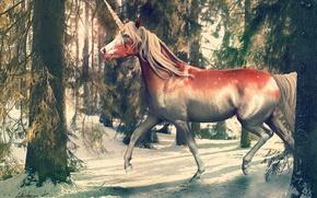 Picture winter, forest, nature, unicorn, fantasy, by i-mi