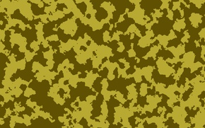 Picture weapons, color, painting, Camouflage
