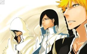 Picture bleach, Ichigo Kurosaki, anime, art, Shinigami, Grimmjow Jaegerjaquez