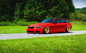 Picture BMW, Red, Grass, Green, Color, Stance, Low, E91