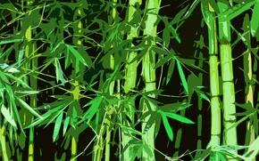 Picture forest, China, Bamboo, China, Bamboo