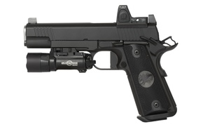 Picture gun, weapons, 9mm, semi-automatic, Nighthawk Custom, Shadow Hawk