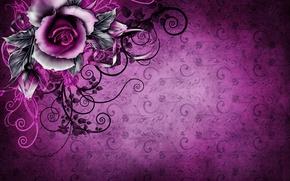Wallpaper vintage, floral, background, purple, rose, grunge, texture, texture, paper, wallpaper, rose, vintage