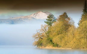 Picture forest, mountains, fog, lake
