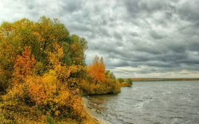 Picture autumn, trees, clouds, river, overcast, shore, the bushes