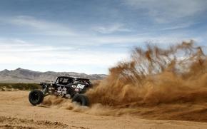 Picture race, desert, desert, race, buggy, baggi