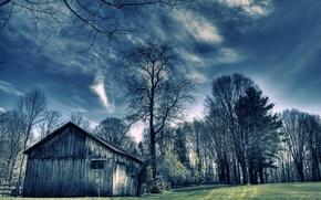Picture field, trees, landscape, house, color