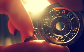 Picture light, photo, hands, medallion, fingers, away