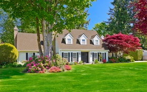 Picture greens, summer, grass, the sun, trees, flowers, design, house, lawn, mansion, the bushes, lawn