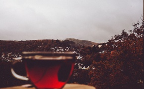 Wallpaper cup, village, tea, cloudy, rainy