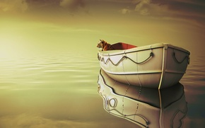 Picture sea, clouds, tiger, boat