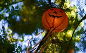 Wallpaper happy Hallo, holiday, Halloween, nature, flashlight, blur, bokeh, pumpkin