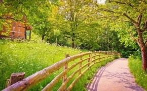 Picture road, greens, summer, grass, trees, nature, the fence, shadow, wooden, house