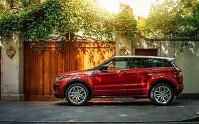 Picture Evoque, land Rover, range Rover, Land Rover, Range Rover, Ewok