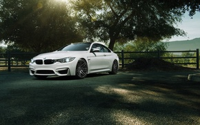 Picture car, rechange, 1013mm, BMW M4