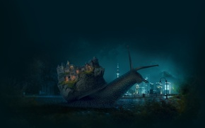 Picture animals, night, the city, castle, the moon, mood, Macro, snail