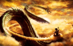 Wallpaper dragon, guy, anime, art, dragonball