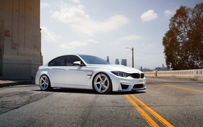 Picture bmw, BMW, white, wheels, tuning, front, face, germany, low, stance, f30, f80