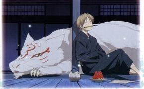 Picture summer, night, lamp, watermelon, brush, art, madara, natsume yuujinchou, the Natsume book of friendship, youkai, …