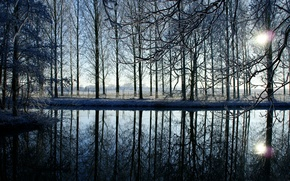 Picture winter, water, the sun, snow, sunset, branches, lake, reflection, river, the fence, the evening, fence, …