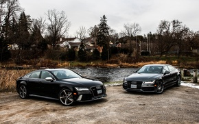 Picture nature, Audi, two, black, RS7