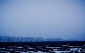 Picture winter, field, snow, trees, strips, Ukraine