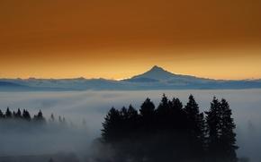 Picture landscape, sunset, fog