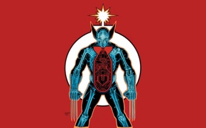 Picture Wolverine, Wolverine, Logan, Logan, claws, x-ray, skeleton, the atomic bomb, red background, marvel, comic, Marvel …