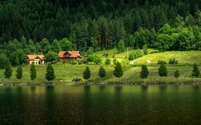Picture Nature, Home, Forest, Norway, Field, River