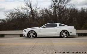 Picture machine, auto, trees, Mustang, Ford, auto, Black, wheel, side, Matte, Face, Wheels, Concave, Machined, CW-5