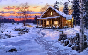 Picture the sky, snow, traces, lights, house, Winter