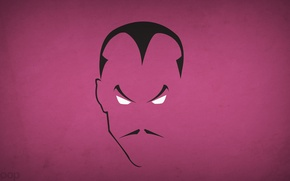 Picture minimalism, blo0p, Sinestro