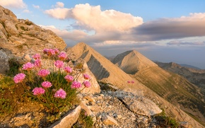 Picture the sky, clouds, landscape, flowers, mountains, nature, rocks, sky, landscape, nature, flowers, mountains, clouds, rocks, …