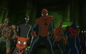 Picture spider girl, spider man 2099, ultimate spider man, spider pig, Miles Morales Ultimate Spider Man, …