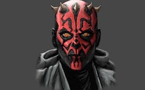 Picture spikes, star wars, star wars, Darth Maul, Sith, Darth Maul, dark gray, A Sith Lord, ...