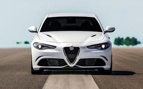 Picture Alfa Romeo, Four-leaf clover, Giulia