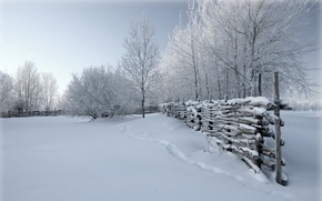 Picture winter, snow, nature, the fence
