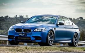 Picture blue, BMW, BMW, F10, Sedan, 2015