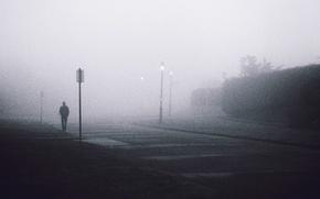 Picture misty, street, fog, man, lamps