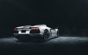 Picture Roadster, Lamborghini, Dark, White, Studio, LP700-4, Aventador, Supercar, Rear