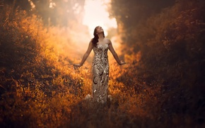 Picture forest, grass, girl, the sun, morning, dress