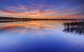 Picture forest, the sky, grass, water, clouds, trees, sunset, orange, lake, surface, reflection, the evening, Sweden, …