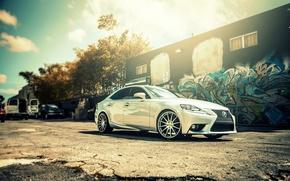 Picture Lexus, wheels, black, metallic, Lexus, IS250