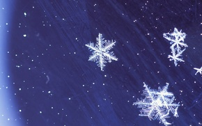 Wallpaper blue, Snowflakes, winter