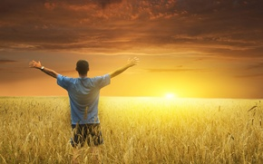 Picture field, the sun, dawn, meeting, hands, People, ears, welcomes