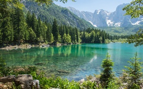 Wallpaper forest, mountains, nature, lake, tree, forest, nature, mountains, lake, tree