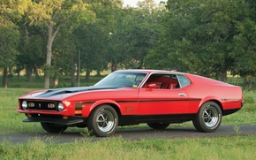 Picture trees, red, Mustang, Ford, Ford, 1971, Mustang, the front, Muscle car, Mach 1, Muscle car