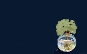 Wallpaper tree, water, aquarium, shadow