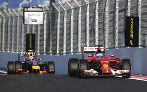 Picture Ferrari, Formula 1, Fernando Alonso, Alonso