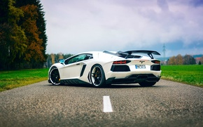 Picture road, white, Lamborghini, white, white, auto, Lamborghini, fast